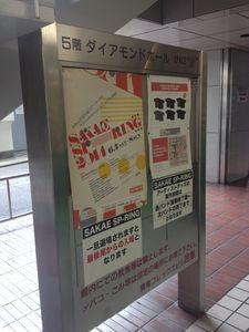 Sakae_spring1